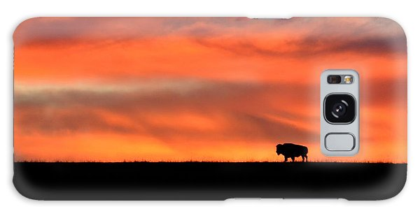 Bison In The Morning Light Galaxy Case