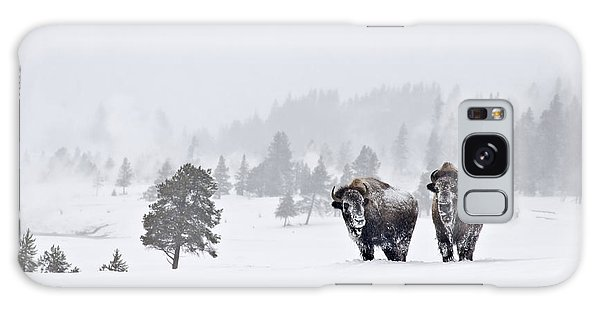 Bison In The Snow Galaxy Case by Gary Lengyel