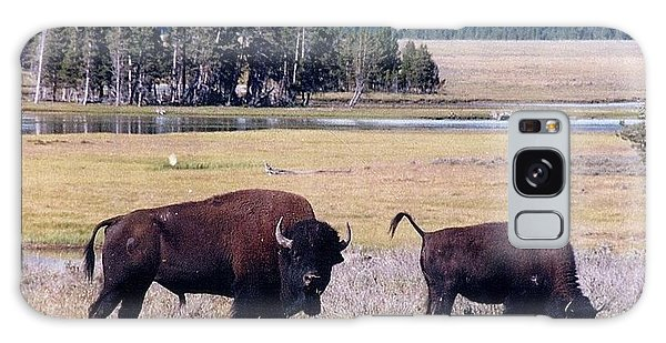 Bison In Yellowstone Galaxy Case