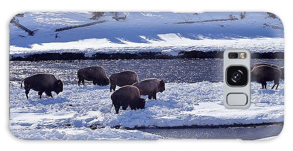 Bison On River Strand Landscape Galaxy Case