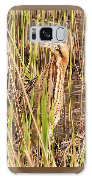 Bittern In The Reeds Galaxy Case