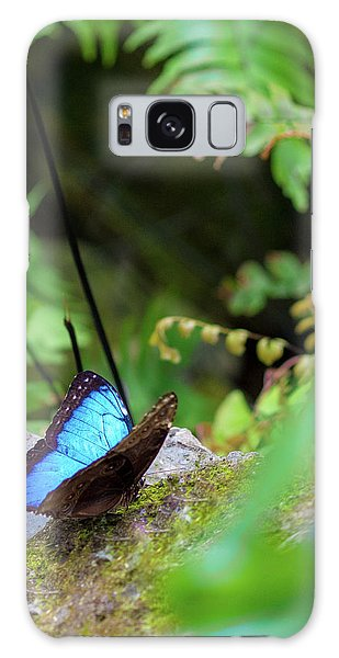 Black And Blue Butterfly Galaxy Case