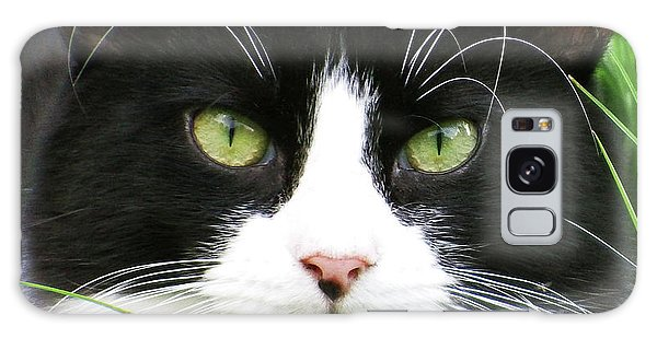 Black And White Cat Galaxy Case