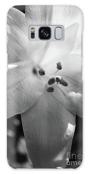 Galaxy Case - Black And White Easter Lily by Megan Cohen