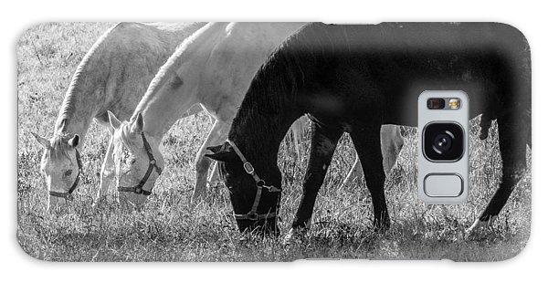 Black And White Horse Trio Grazing Galaxy Case by Eleanor Abramson