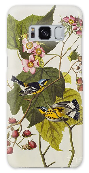 Black And Yellow Warbler Galaxy Case