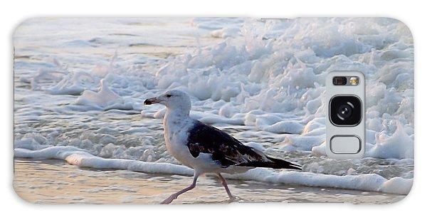 Black-backed Gull Galaxy Case