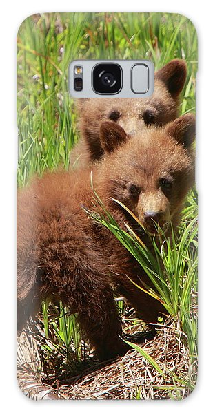 Black Bear Cubs Galaxy Case