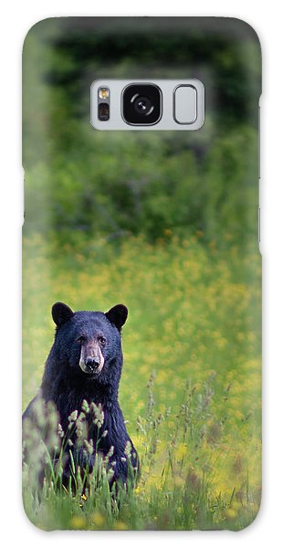 Black Bear Lookin At Me Galaxy Case