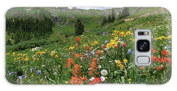 Black Bear Pass Landscape Galaxy Case