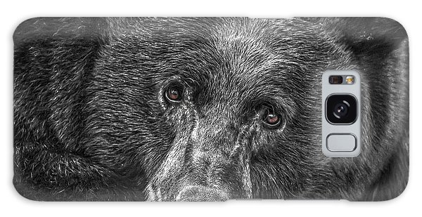 Black Bear Portrait 3 Galaxy Case