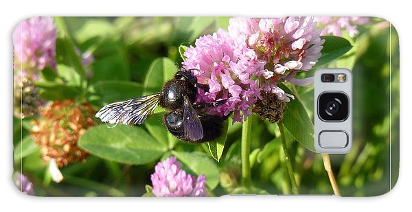 Black Bee On Small Purple Flower Galaxy Case by Jean Bernard Roussilhe