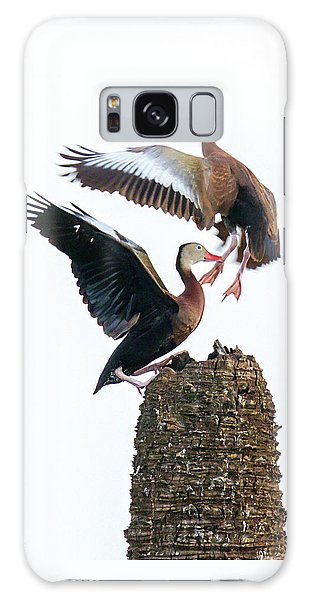 Black-bellied Whistling Duck Dance Galaxy Case