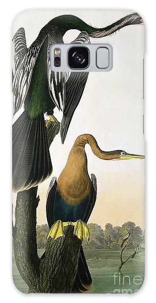 Anhinga Galaxy Case - Black Billed Darter by John James Audubon
