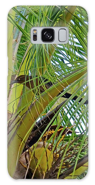 Galaxy Case featuring the photograph Black Bird In Tree by Francesca Mackenney