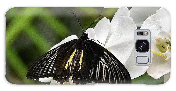 Black Butterfly Galaxy Case