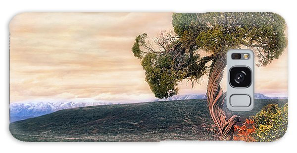 Galaxy Case featuring the photograph Black Canyon Juniper - Colorado - Autumn by Jason Politte
