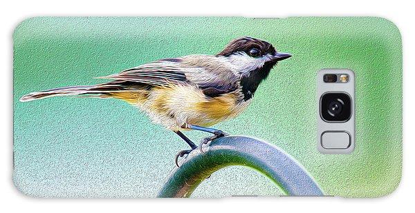 Song Birds Galaxy Case - Black-capped Chickadee Oil by Onyonet  Photo Studios