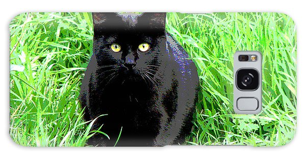 Black Cat In A Green Field Galaxy Case