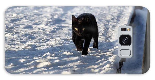 Black Cat In Snow Galaxy Case by Mark McReynolds