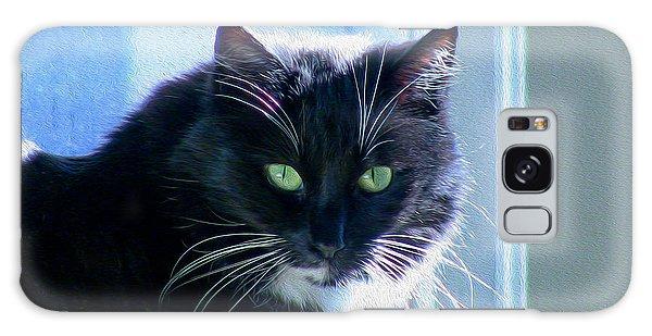 Black Cat In Sun Galaxy Case