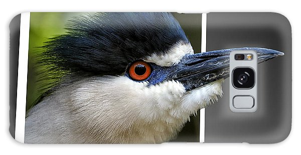 Black Crowned Night Heron Out Of Bounds Galaxy Case