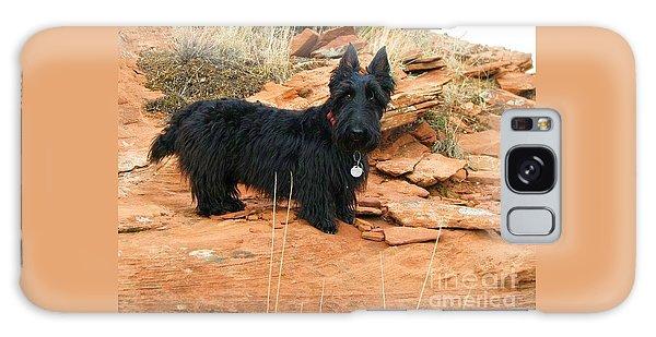 Black Dog Red Rock Galaxy Case