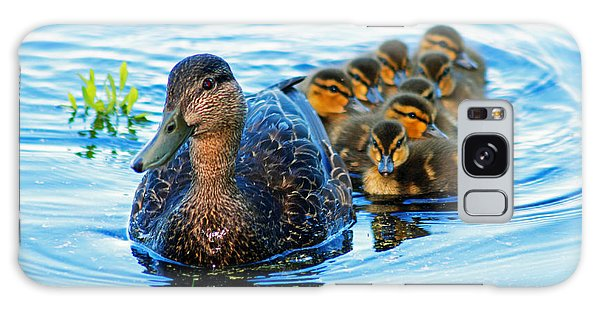 Black Duck Brood Galaxy Case