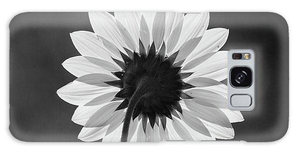 Black-eyed Susan - Black And White Galaxy Case