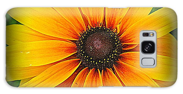 'black Eyed Susan' Galaxy Case