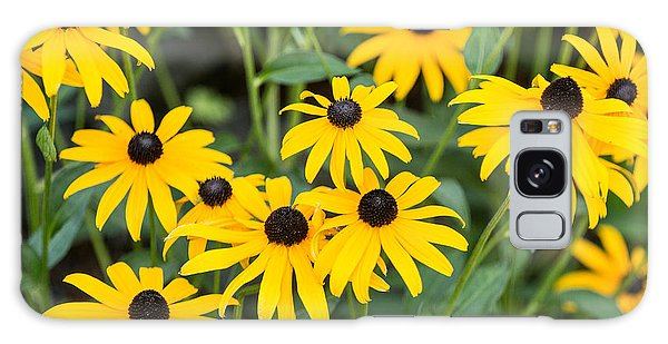 Black-eyed Susan Up Close Galaxy Case