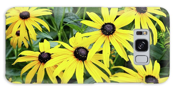 Daisy Galaxy S8 Case - Black Eyed Susans- Fine Art Photograph By Linda Woods by Linda Woods