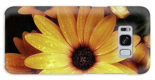 Galaxy Case featuring the photograph Black Eyed Susans. Looks Like They're by Mr Photojimsf