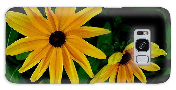 Black-eyed Susans Galaxy Case by Robert Knight