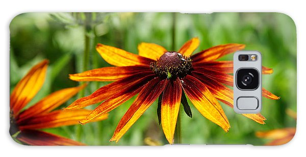 Black-eyed Susans Galaxy Case