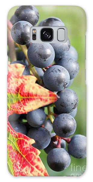 Black Grapes On The Vine Galaxy Case
