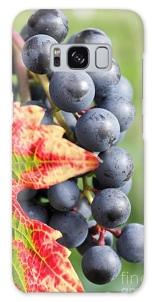 Black Grapes On The Vine Galaxy Case