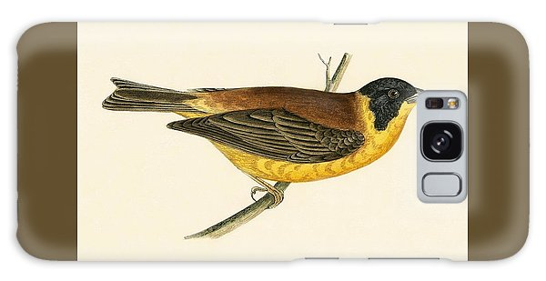 Black Headed Bunting Galaxy Case