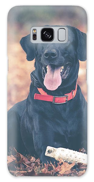 Black Labrador In The Fall Leaves Galaxy Case