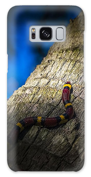 Grass Snake Galaxy Case - Black Next To Red Don't Mean Jack by Marvin Spates