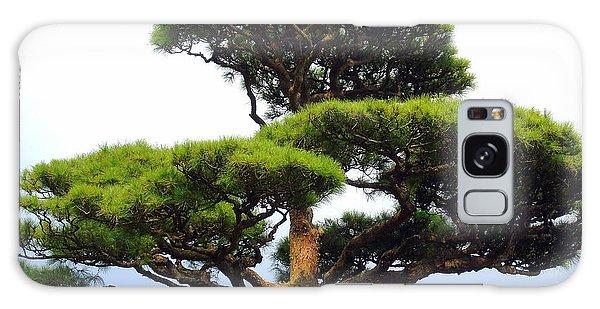 Black Pine Japan Galaxy Case
