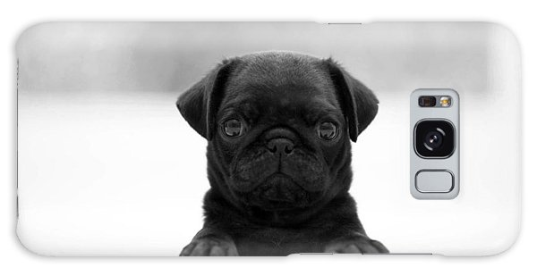Black Pug Galaxy Case
