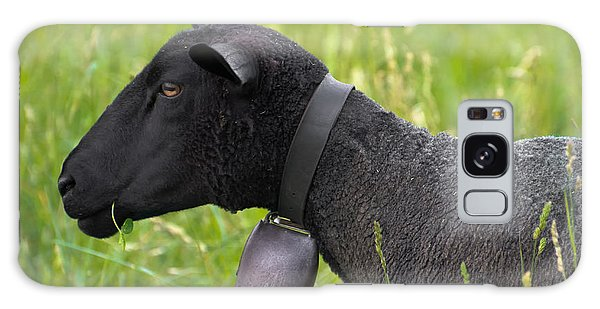 Black Sheep Galaxy Case