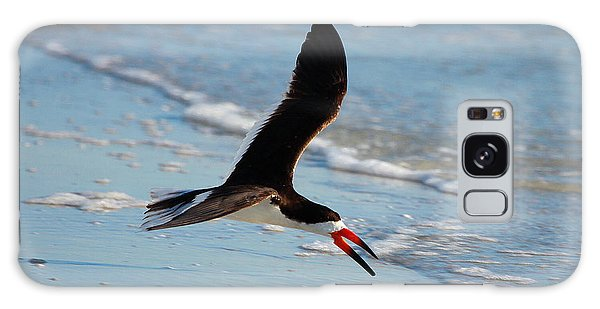 Black Skimmer Galaxy Case