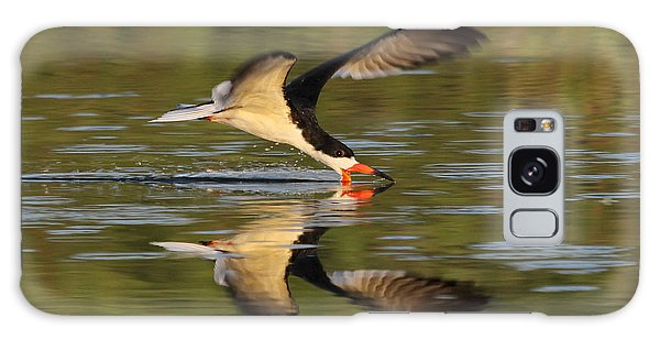 Black Skimmer Fishing Galaxy Case by Meg Rousher