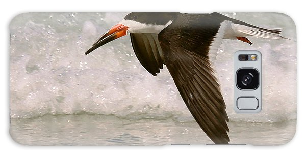 Black Skimmer Flight Galaxy Case