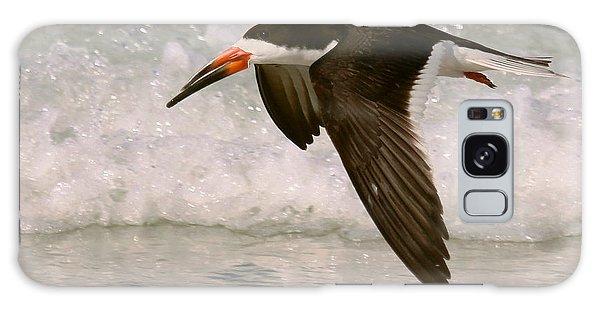 Black Skimmer Flight Galaxy Case by Myrna Bradshaw