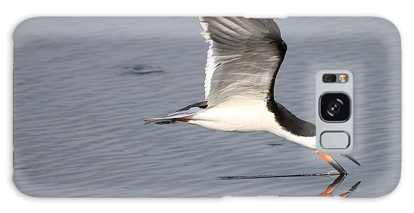 Black Skimmer And Reflection Galaxy Case by Kathy Gibbons