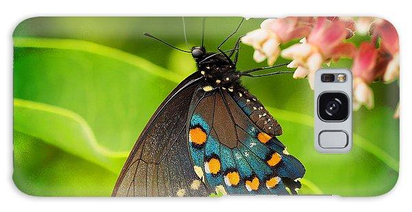 Black Swallowtail #1 Galaxy Case