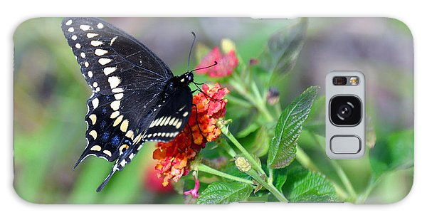Black Swallowtail Galaxy Case by Kay Lovingood